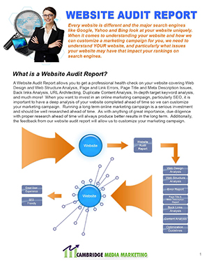 Web-Audit-Sales-Collaterals-prev
